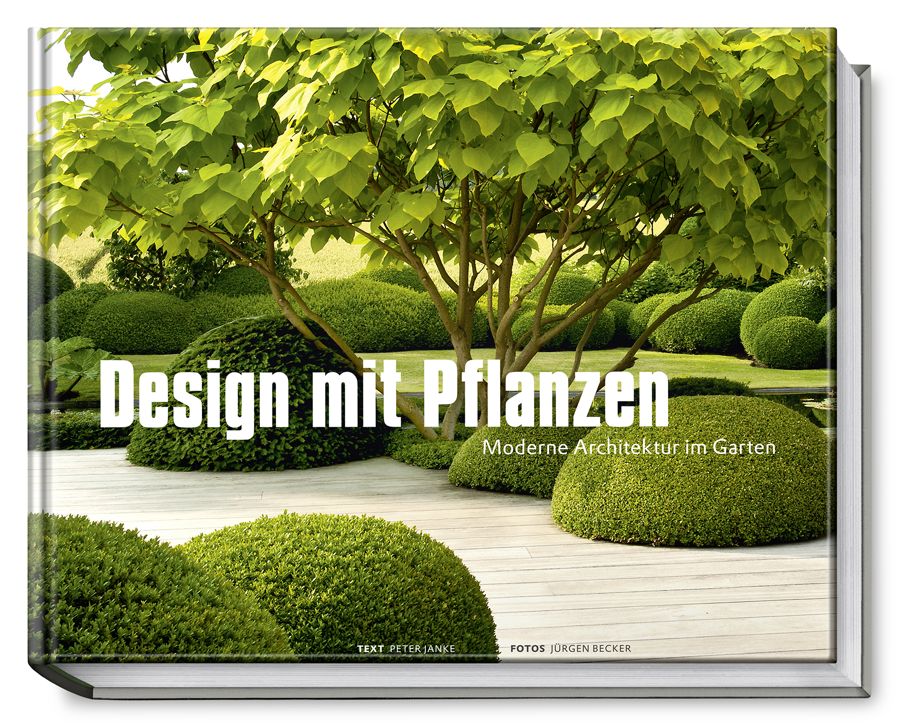 Cover download for Designer pflanzen
